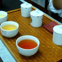Types of Taiwan Tea
